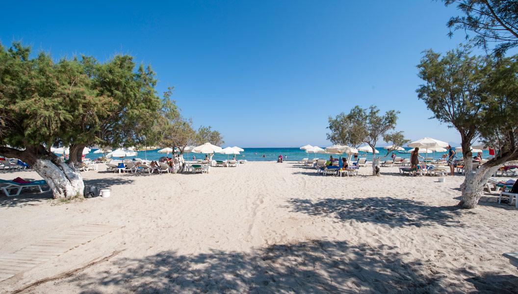 Www Hotel Corali Kos Griechenland